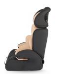 scaun lateral 1 e1510926238329